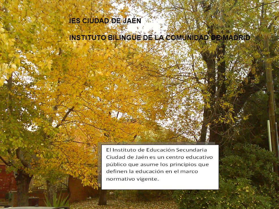 NUESTRA SEÑA DE IDENTIDAD Nuestra actividad educativa es un servicio público Documento aprobado en Consejo escolar el 30 de Junio de 2010 El Instituto de Educación Secundaria Ciudad de Jaén es el resultado de la diversidad de enseñanzas que imparte y de las diferencias de sus alumnos.