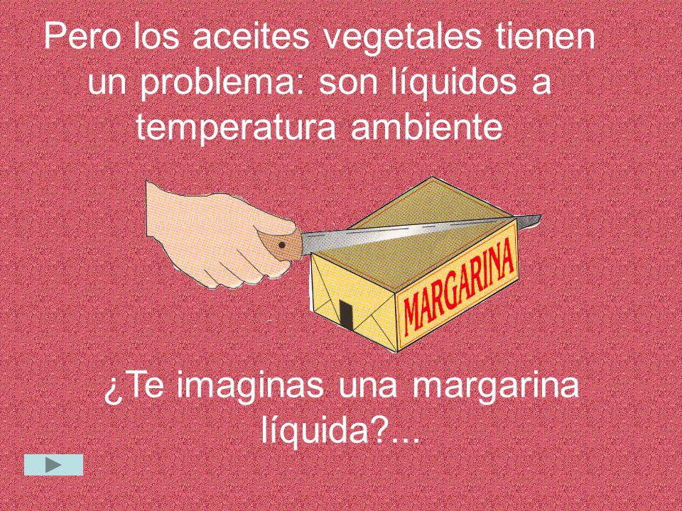 Pero los aceites vegetales tienen un problema: son líquidos a temperatura ambiente ¿Te imaginas una margarina líquida?...