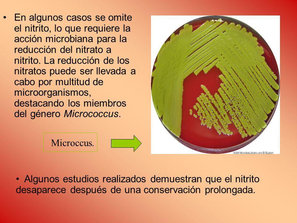 En algunos casos se omite el nitrito, lo que requiere la acción microbiana para la reducción del nitrato a nitrito.