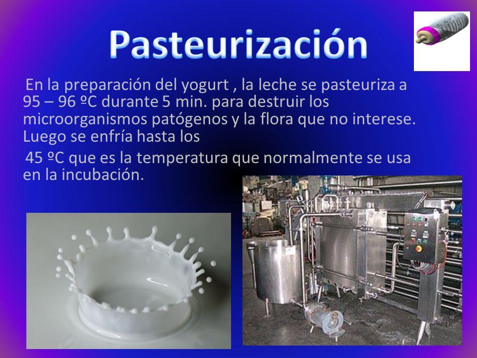 En la preparación del yogurt, la leche se pasteuriza a 95 – 96 ºC durante 5 min.