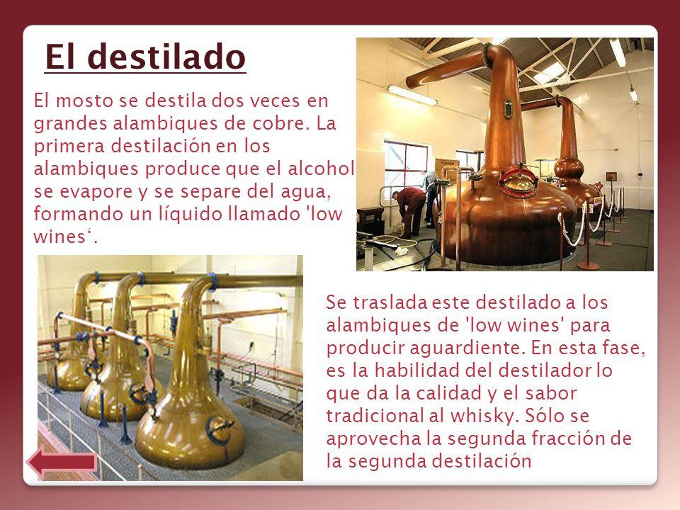 El destilado El mosto se destila dos veces en grandes alambiques de cobre. La primera destilación en los alambiques produce que el alcohol se evapore