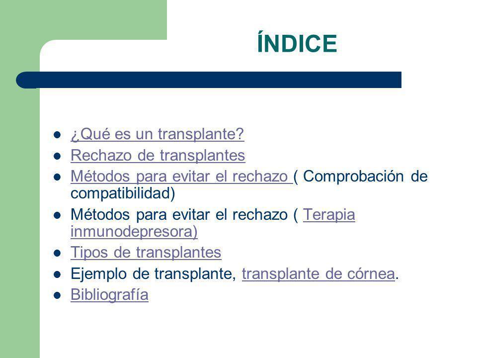 ÍNDICE ¿Qué es un transplante.¿Qué es un transplante.