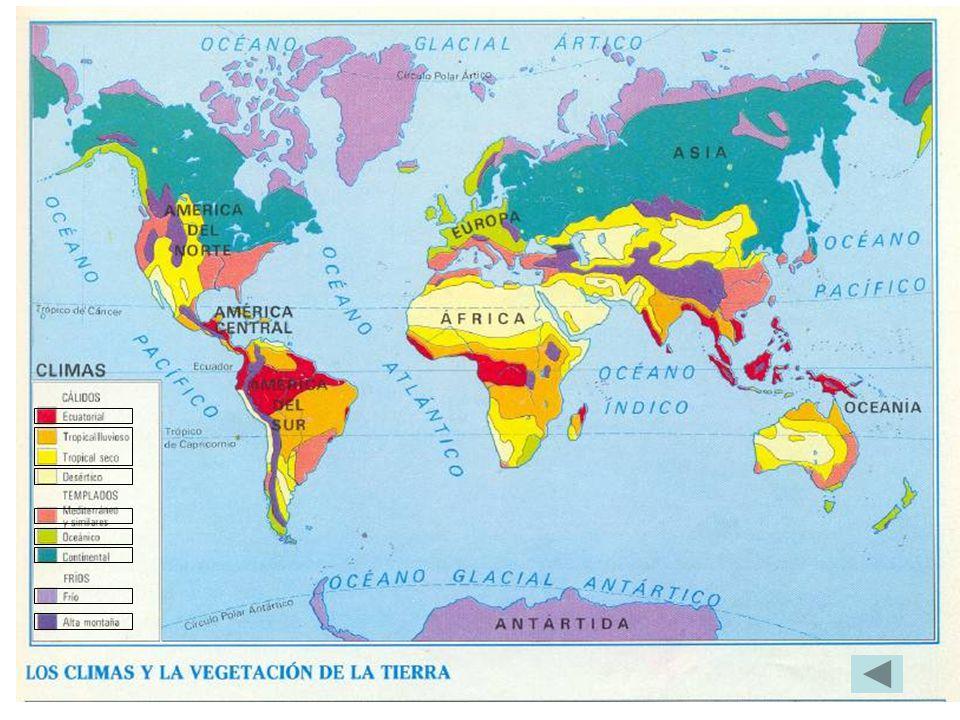 CLIMA ECUATORIAL: Área comprendida entre los 10º de Latitud Norte y los 5º de Latitud Sur.