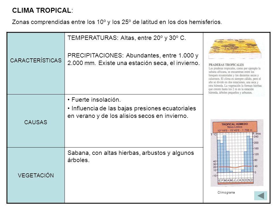 CLIMA TROPICAL: Zonas comprendidas entre los 10º y los 25º de latitud en los dos hemisferios. CARACTERÍSTICAS TEMPERATURAS: Altas, entre 20º y 30º C.