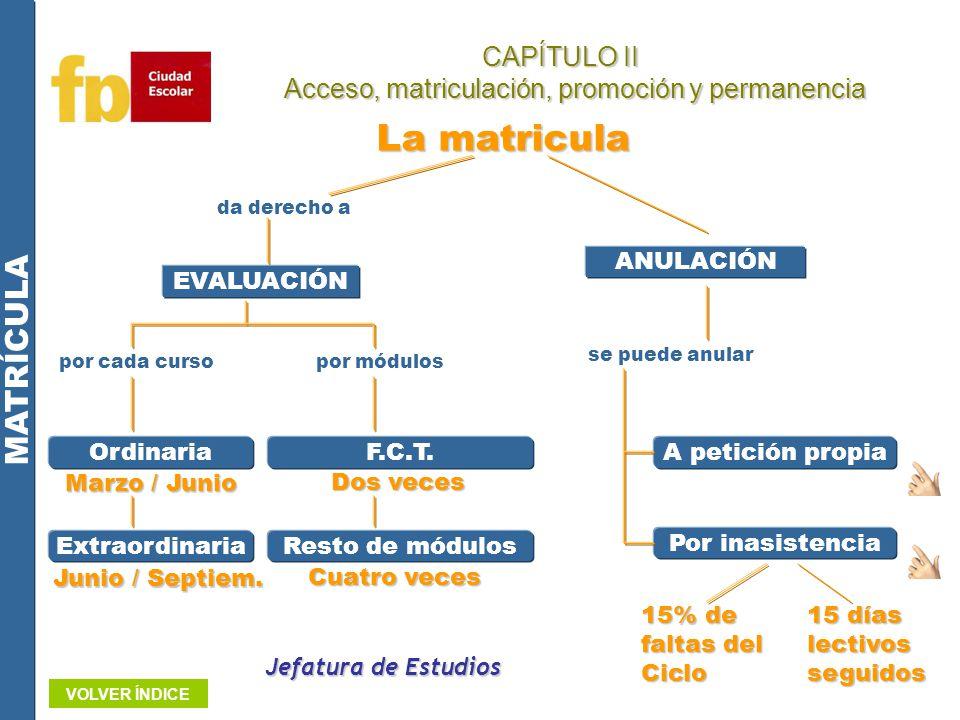 Jefatura de Estudios CAPÍTULO II Acceso, matriculación, promoción y permanencia Acceso, matriculación, promoción y permanencia La matricula EVALUACIÓN