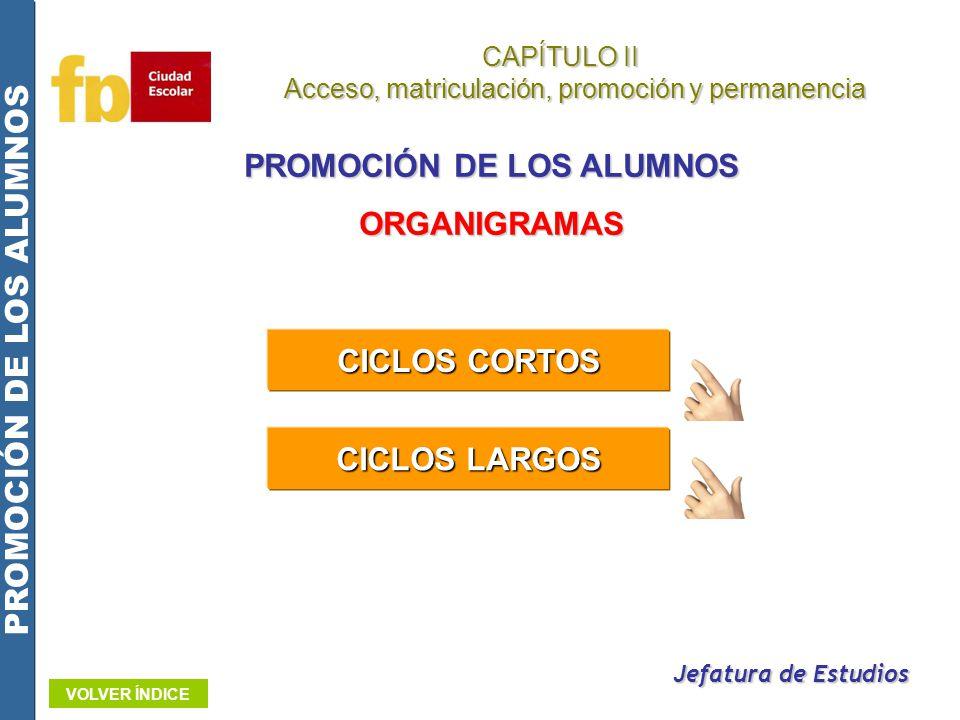 CAPÍTULO II Acceso, matriculación, promoción y permanencia Acceso, matriculación, promoción y permanencia PROMOCIÓN DE LOS ALUMNOS Jefatura de Estudio