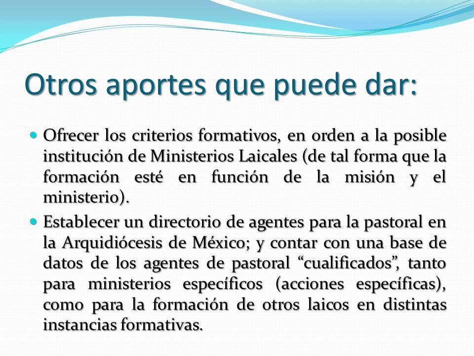 Otros aportes que puede dar: Ofrecer los criterios formativos, en orden a la posible institución de Ministerios Laicales (de tal forma que la formación esté en función de la misión y el ministerio).