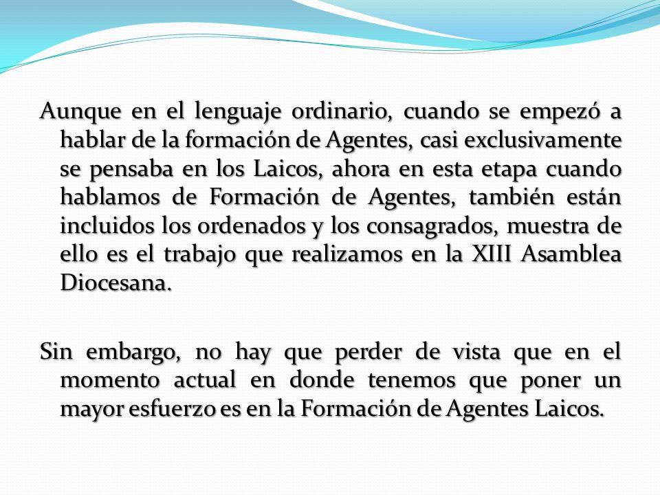 Campos de Acción de la CAFAP: Definir y completar un marco referencial para la Formación de los Agentes de Pastoral en la Arquidiócesis de México.