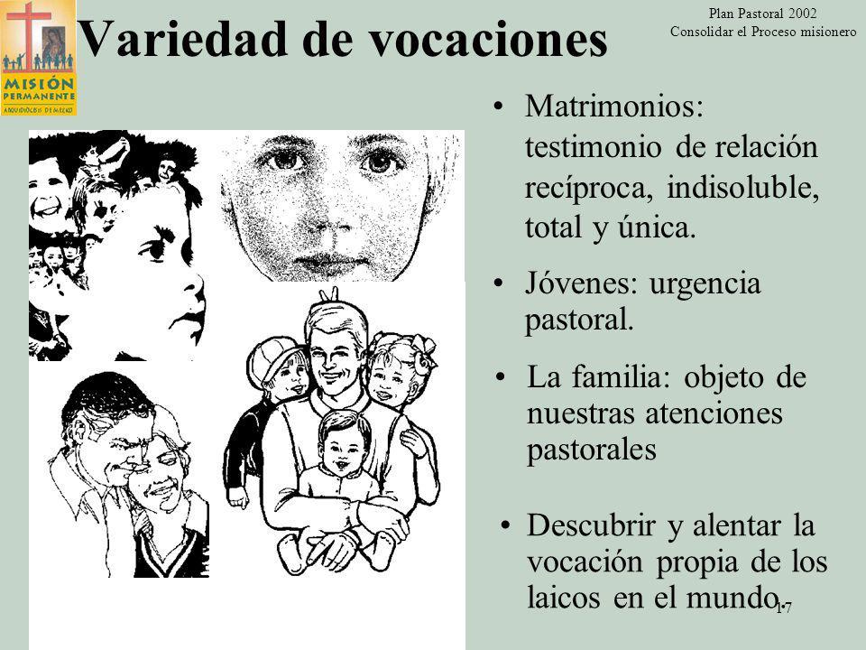 Plan Pastoral 2002 Consolidar el Proceso misionero 16 Variedad de vocaciones (CPM 40-45) Impulsar a todos los bautizados y confirmados a que tomen conciencia de su responsabilidad en la vida eclesial.