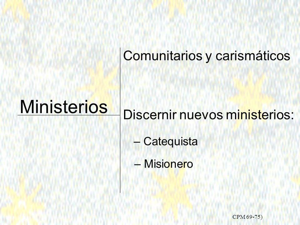 Plan Pastoral 2002 Consolidar el Proceso misionero 25 Captar y Formar nuevos agentes (CPM 63-68) Lleven a la práctica la vitalidad de su bautismo en el campo que les es propio.