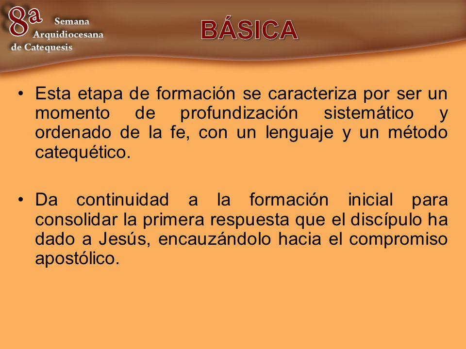 Esta etapa de formación se caracteriza por ser un momento de profundización sistemático y ordenado de la fe, con un lenguaje y un método catequético.