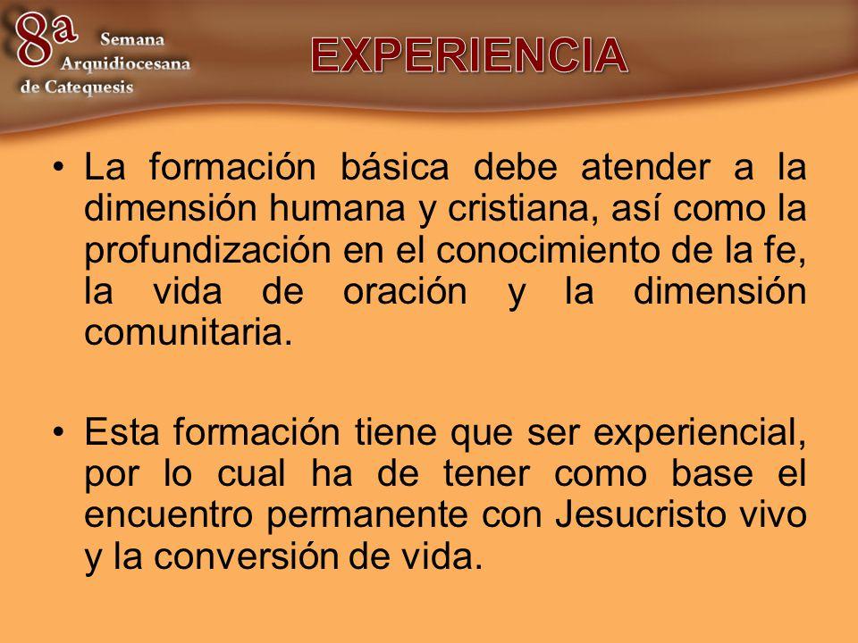 La formación básica debe atender a la dimensión humana y cristiana, así como la profundización en el conocimiento de la fe, la vida de oración y la di