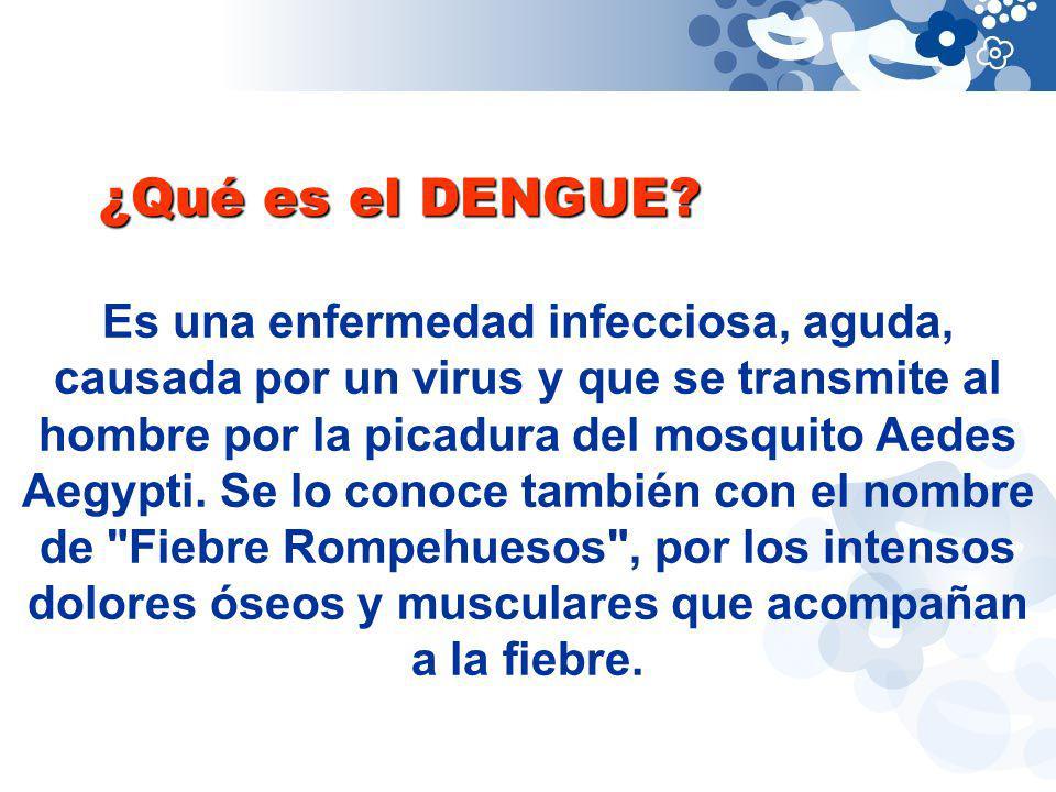 ¿Qué es el DENGUE? Es una enfermedad infecciosa, aguda, causada por un virus y que se transmite al hombre por la picadura del mosquito Aedes Aegypti.