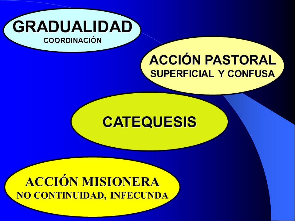 MOMENTO FUNDAMENTAL Y PRIORITARIO DEL PROCESO DE EVANGELIZACIÓN