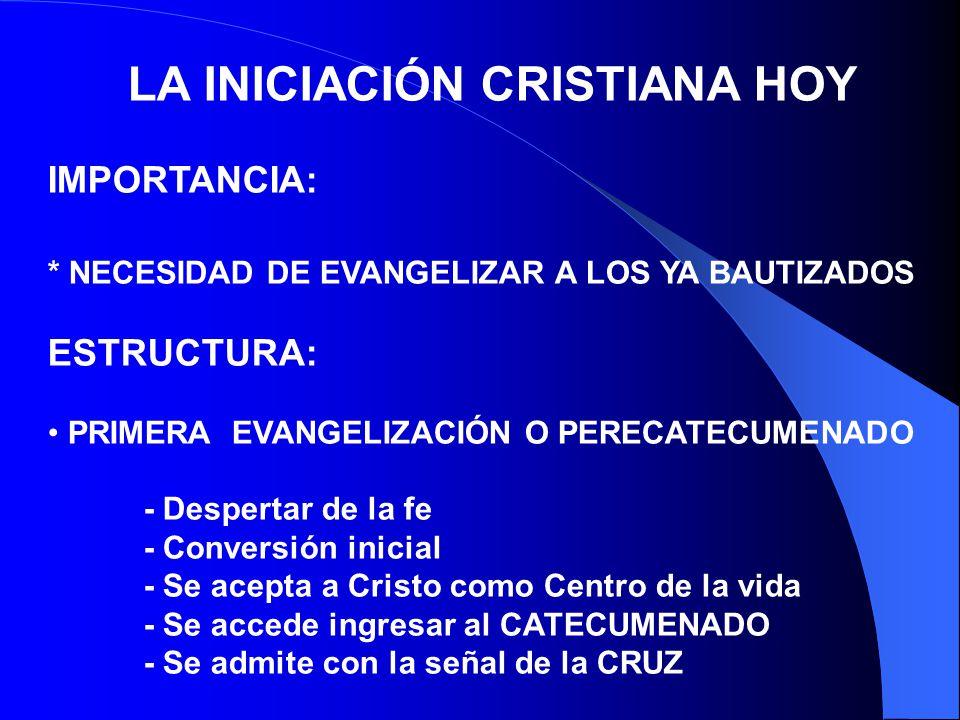 REINICIACIÓN PROCESO INTENSIVO DE EVANGELIZACIÓN POR EL CONOCIMIENTO Y EXPERIENCIA DE LAS EXIGENCIAS FUNDAMENTALES DE VIDA CRISTIANA, QUIERE IMPULSAR