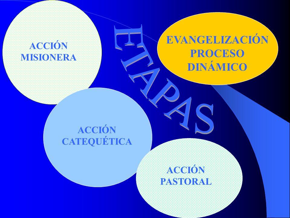 ¿QUÉ ES LA EVANGELIZACIÓN PROCESO RICO Y COMPLEJO TESTIMONIO ANUNCIO DE LA PALABRA ADHESIÓN AL REINO GESTOS SACRAMEN -TALES ENTRADA A LA COMUNIDAD INI