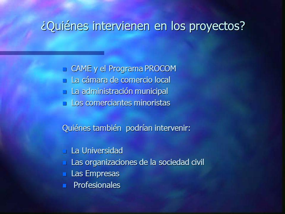 ¿Quiénes intervienen en los proyectos.
