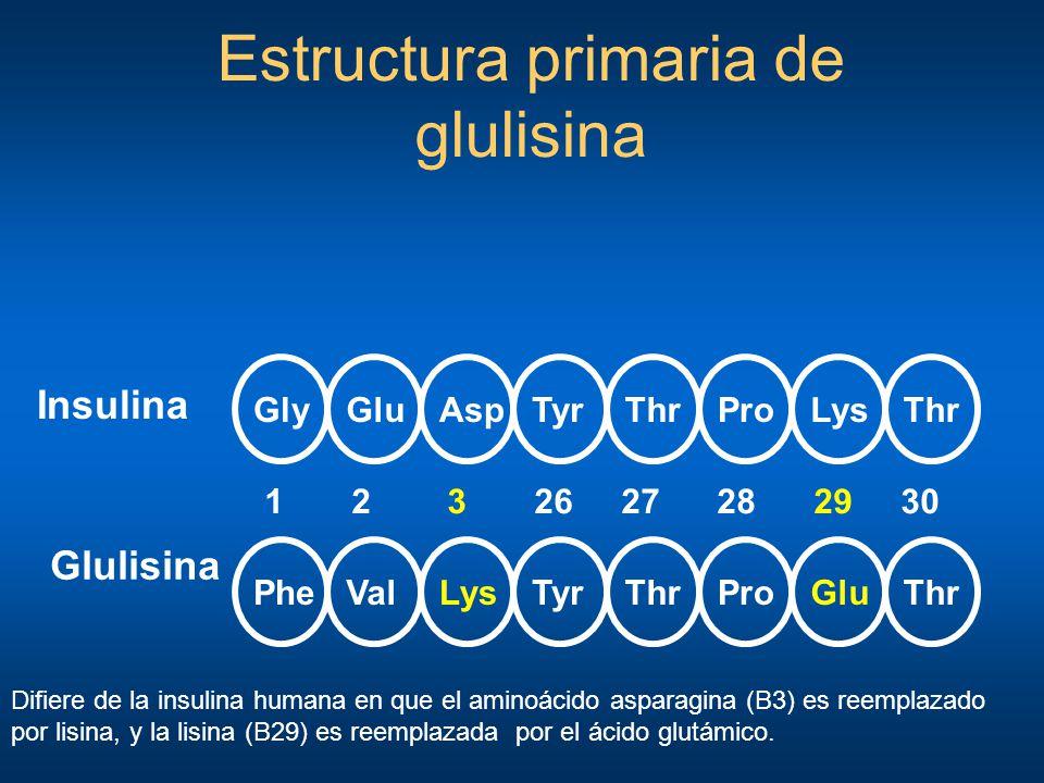 GlyThrGluAspTyrProLysThr PheThrValLysTyrProGluThr 1 2 3 26 27 28 29 30 Insulina Glulisina Estructura primaria de glulisina Difiere de la insulina huma