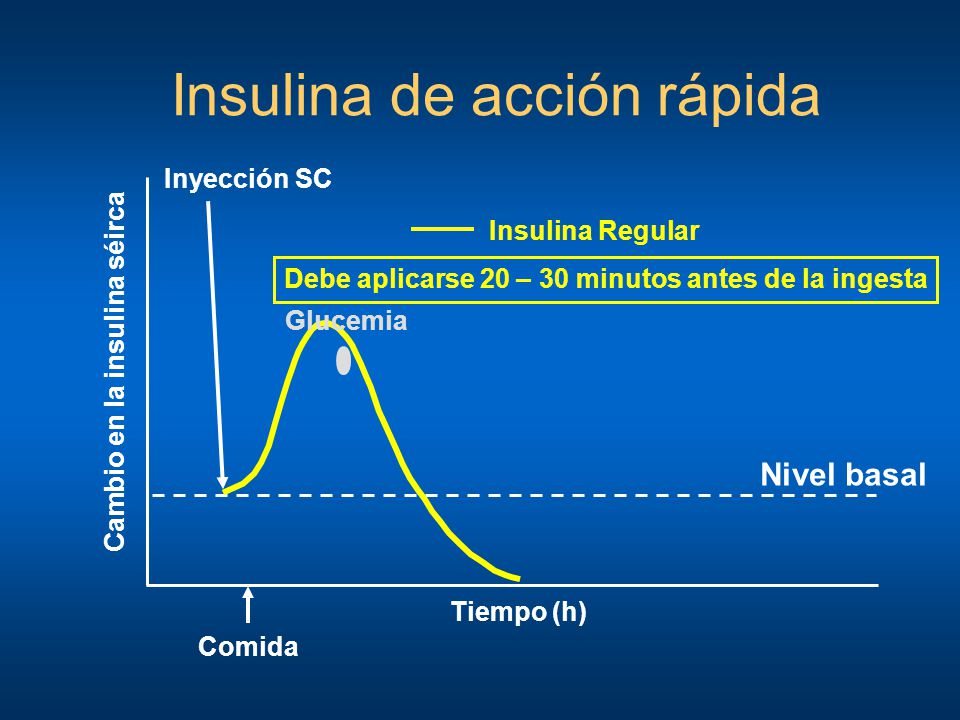 Insulina de acción rápida Tiempo (h) Inyección SC Nivel basal Cambio en la insulina séirca Insulina Regular Glucemia Comida Debe aplicarse 20 – 30 min