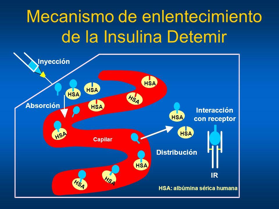 Mecanismo de enlentecimiento de la Insulina Detemir HSA: albúmina sérica humana Distribución Absorción Interacción con receptor HSA Inyección HSA Capi