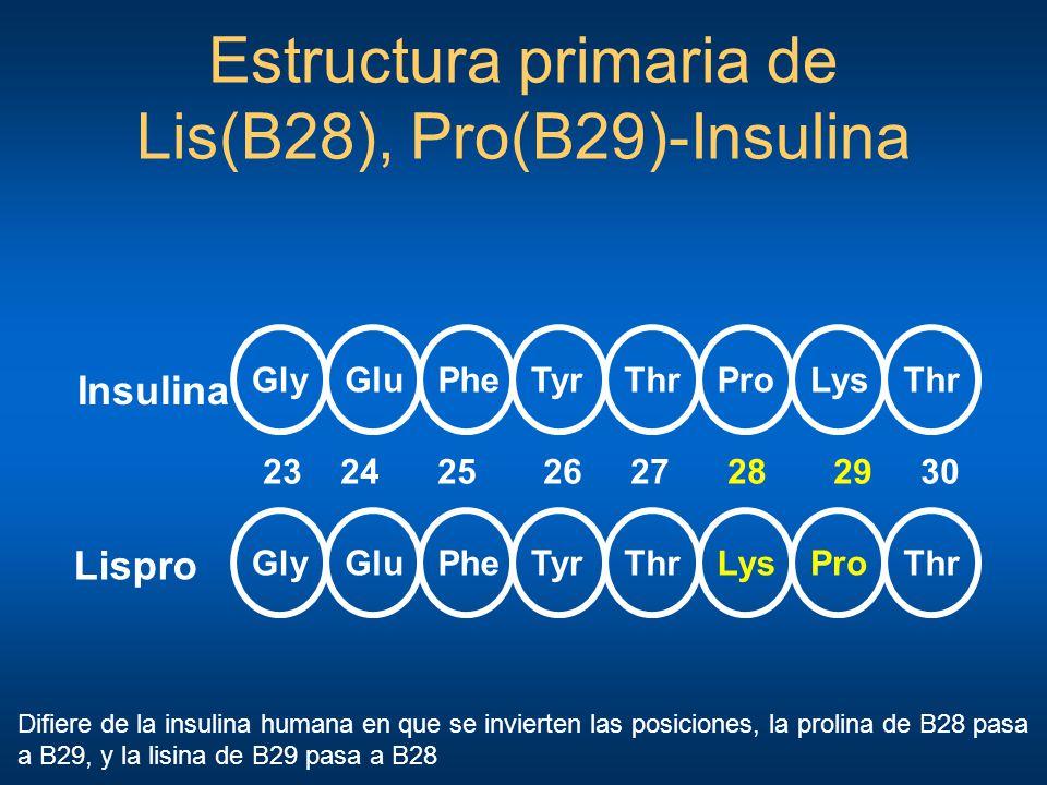 GlyThrGluPheTyrProLysThr GlyThrGluPheTyrAspLysThr 23 24 25 26 27 28 29 30 Insulina Aspart Estructura primaria de Asp(B28)-Insulina Difiere de la insulina humana en que el aminoácido prolina (B29) es reemplazado por el ácido aspártico.