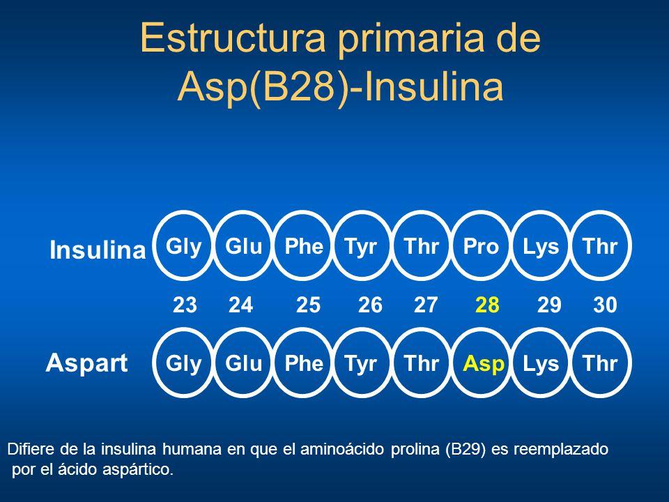 GlyThrGluPheTyrProLysThr GlyThrGluPheTyrAspLysThr 23 24 25 26 27 28 29 30 Insulina Aspart Estructura primaria de Asp(B28)-Insulina Difiere de la insul