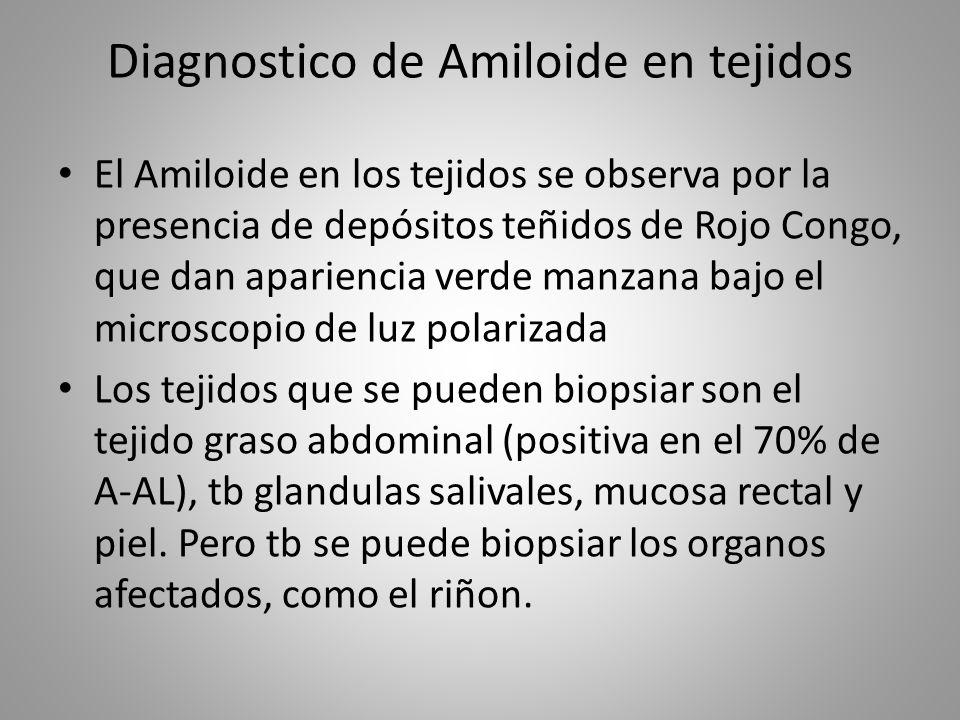Diagnostico de Amiloide en tejidos El Amiloide en los tejidos se observa por la presencia de depósitos teñidos de Rojo Congo, que dan apariencia verde