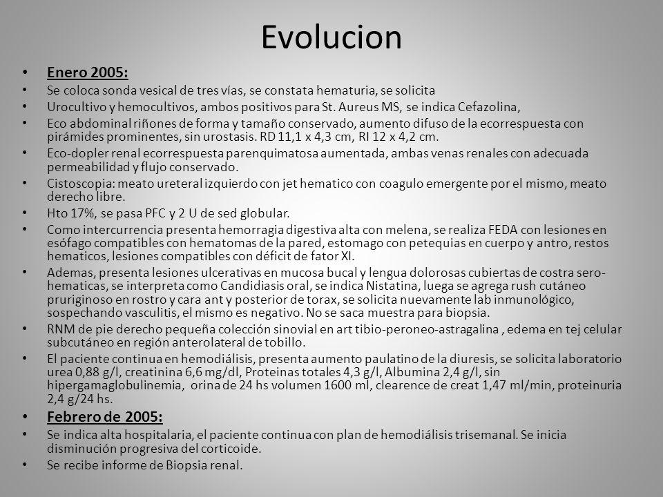 Evolucion Enero 2005: Se coloca sonda vesical de tres vías, se constata hematuria, se solicita Urocultivo y hemocultivos, ambos positivos para St. Aur
