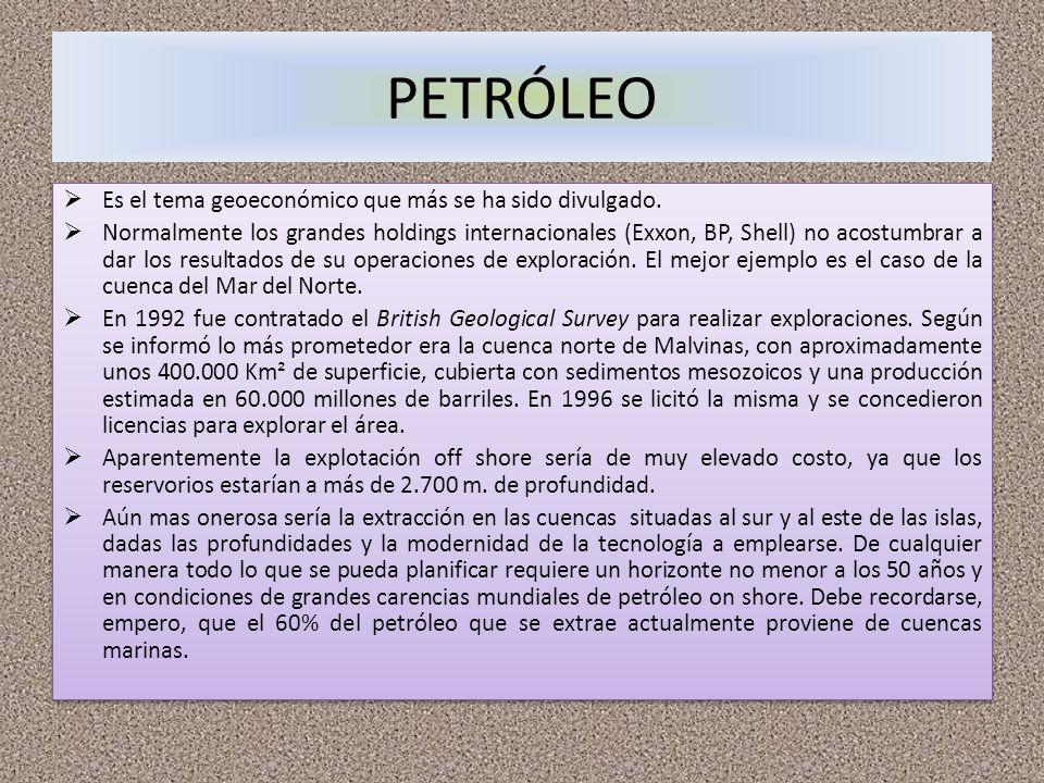 PETRÓLEO Es el tema geoeconómico que más se ha sido divulgado. Normalmente los grandes holdings internacionales (Exxon, BP, Shell) no acostumbrar a da