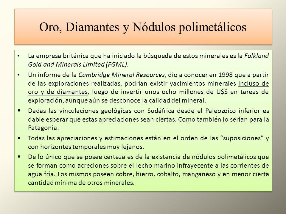 Oro, Diamantes y Nódulos polimetálicos La empresa británica que ha iniciado la búsqueda de estos minerales es la Falkland Gold and Minerals Limited (F