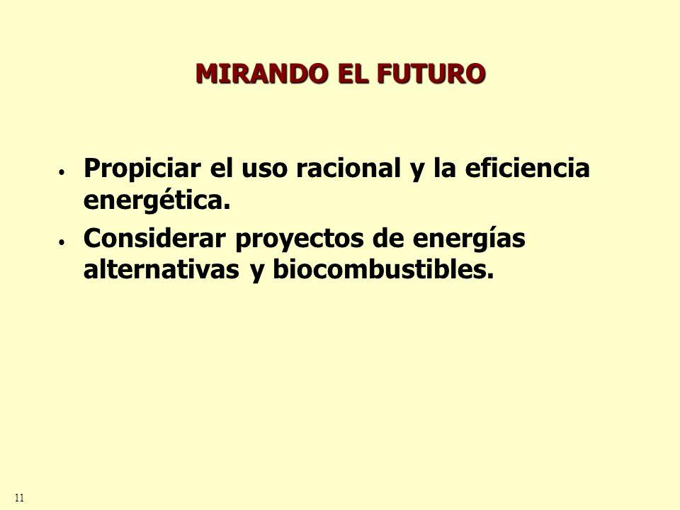 11 MIRANDO EL FUTURO Propiciar el uso racional y la eficiencia energética.