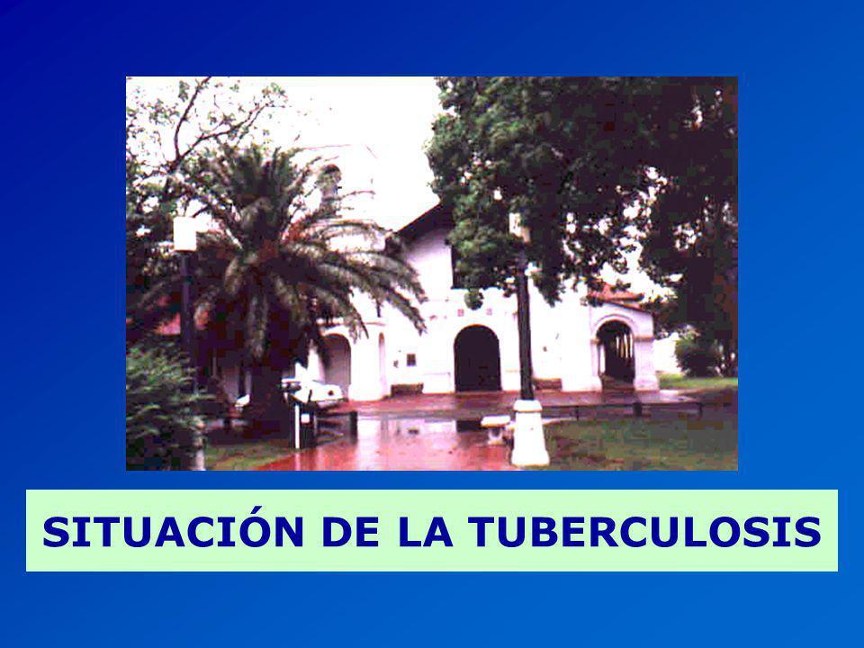 TRATAMIENTO DIRECTAMENTE OBSERVADO ARGENTINA, 2000 Fuente: Sistema de evaluación de tratamiento de la TBC por evaluación de cohortes.