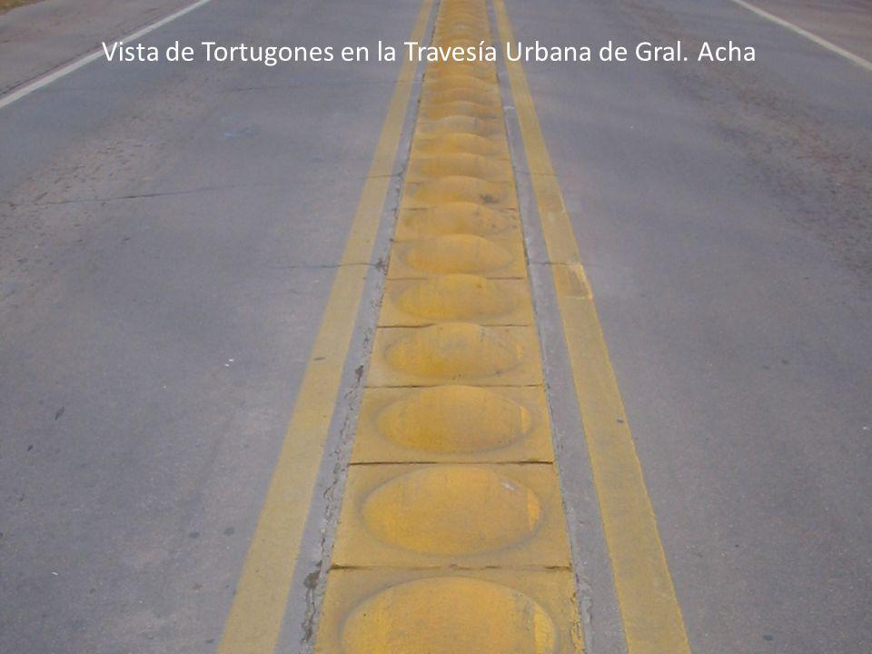 Vista de Tortugones en la Travesía Urbana de Gral. Acha