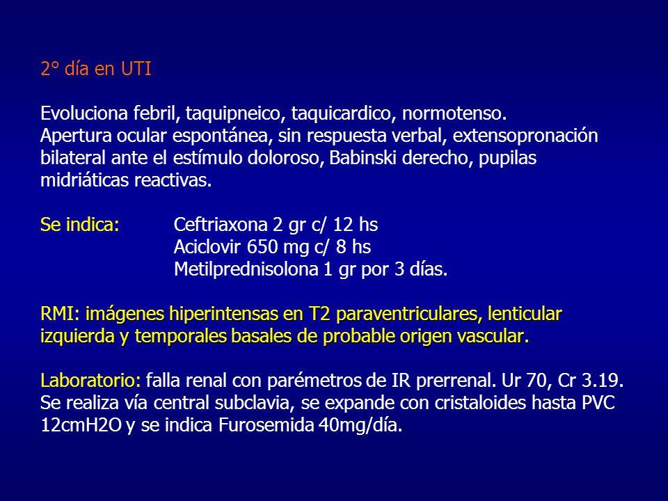 imágenes hiperintensas en T2 paraventriculares, lenticular izquierda y temporales basales de probable origen vascular. 2° día en UTI Evoluciona febril