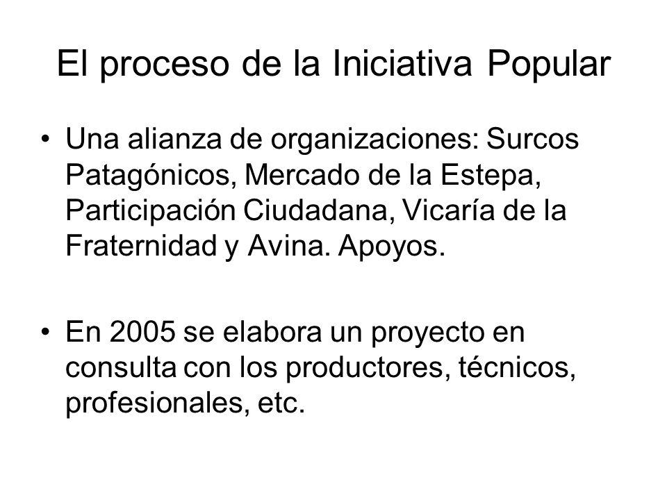 El proceso de la Iniciativa Popular Una alianza de organizaciones: Surcos Patagónicos, Mercado de la Estepa, Participación Ciudadana, Vicaría de la Fr