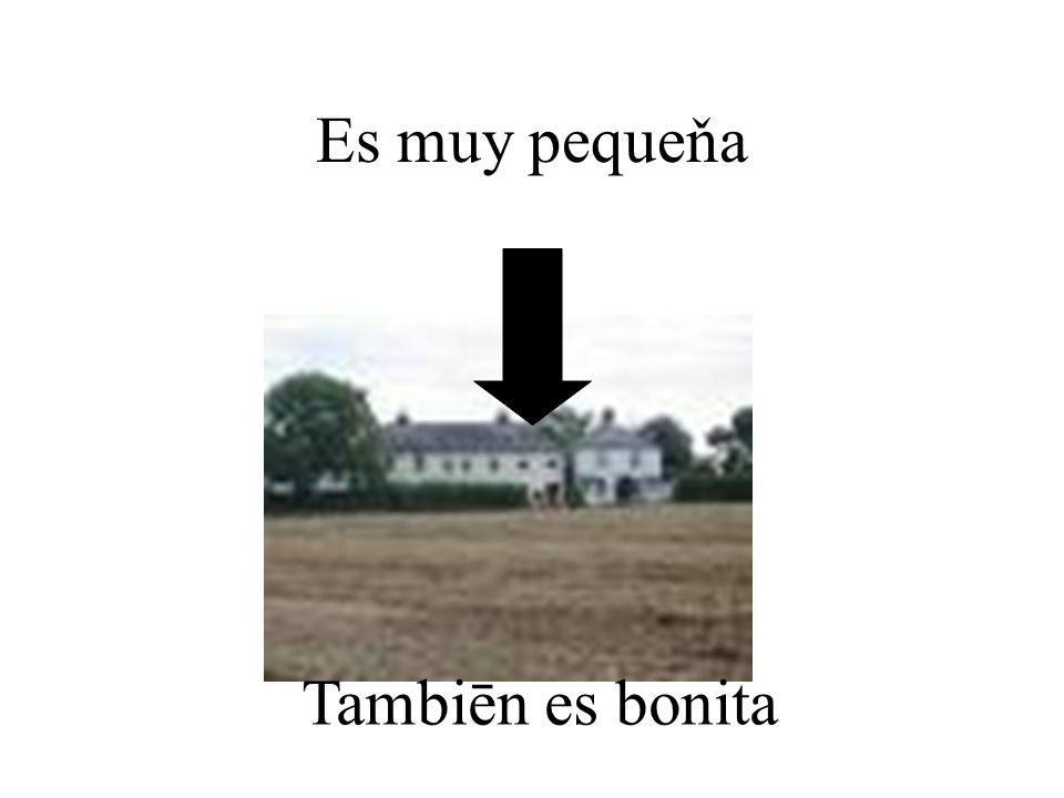 Mi Casa Vives en una casa o un piso .Vives en el centro, las afueras o el campo .
