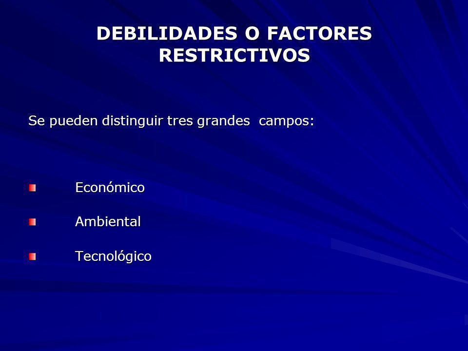 DEBILIDADES O FACTORES RESTRICTIVOS Se pueden distinguir tres grandes campos: EconómicoAmbientalTecnológico