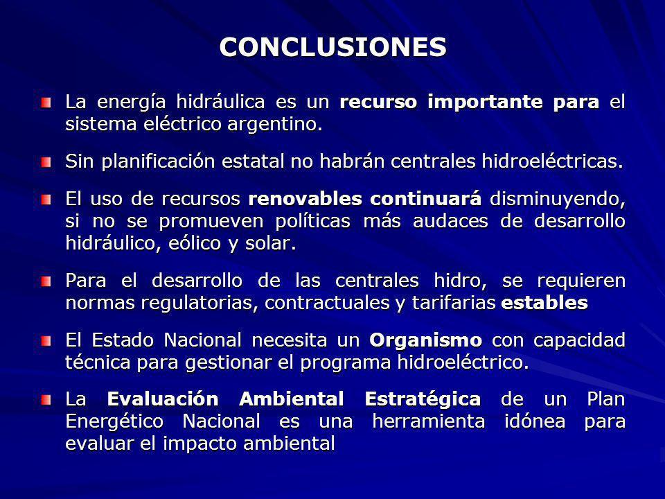 CONCLUSIONES La energía hidráulica es un recurso importante para el sistema eléctrico argentino. Sin planificación estatal no habrán centrales hidroel