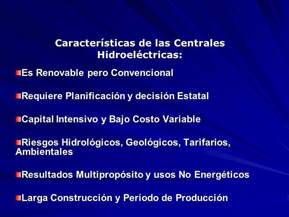 Características de las Centrales Hidroeléctricas: Es Renovable pero Convencional Requiere Planificación y decisión Estatal Capital Intensivo y Bajo Costo Variable Riesgos Hidrológicos, Geológicos, Tarifarios, Ambientales Resultados Multipropósito y usos No Energéticos Larga Construcción y Período de Producción Alto Impacto Ambiental Local y Beneficio Global
