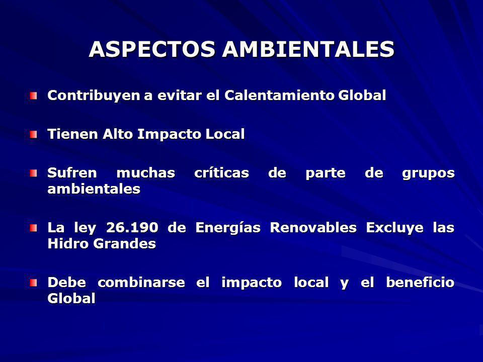 ASPECTOS AMBIENTALES Contribuyen a evitar el Calentamiento Global Tienen Alto Impacto Local Sufren muchas críticas de parte de grupos ambientales La l