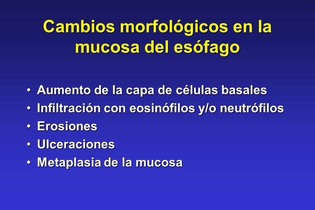 Cambios morfológicos en la mucosa del esófago Aumento de la capa de células basalesAumento de la capa de células basales Infiltración con eosinófilos
