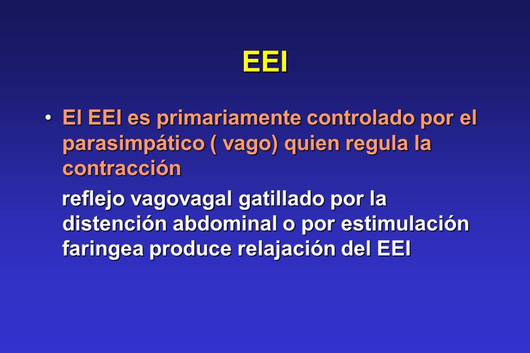 EEI El EEI es primariamente controlado por el parasimpático ( vago) quien regula la contracciónEl EEI es primariamente controlado por el parasimpático