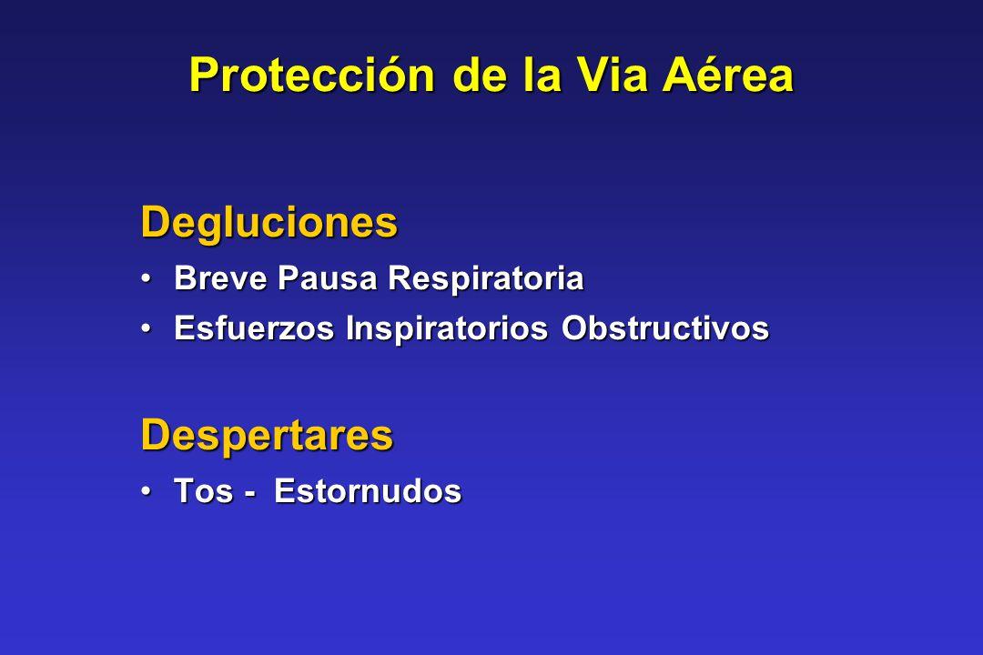 Protección de la Via Aérea Degluciones Breve Pausa RespiratoriaBreve Pausa Respiratoria Esfuerzos Inspiratorios ObstructivosEsfuerzos Inspiratorios Ob