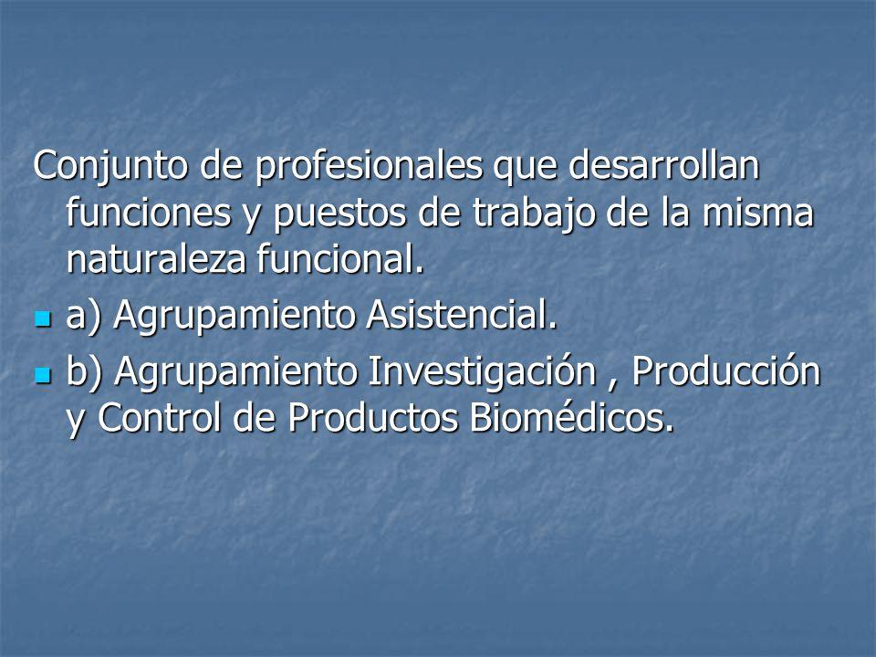 Conjunto de profesionales que desarrollan funciones y puestos de trabajo de la misma naturaleza funcional.