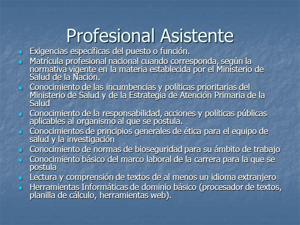 Profesional Asistente Exigencias específicas del puesto o función.