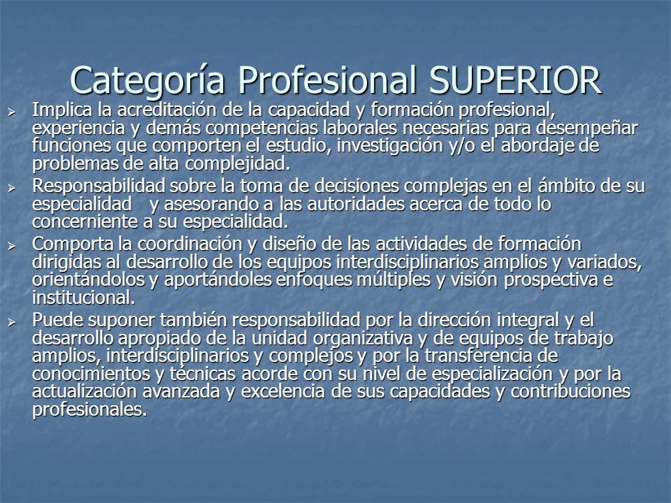 Categoría Profesional SUPERIOR Implica la acreditación de la capacidad y formación profesional, experiencia y demás competencias laborales necesarias para desempeñar funciones que comporten el estudio, investigación y/o el abordaje de problemas de alta complejidad.