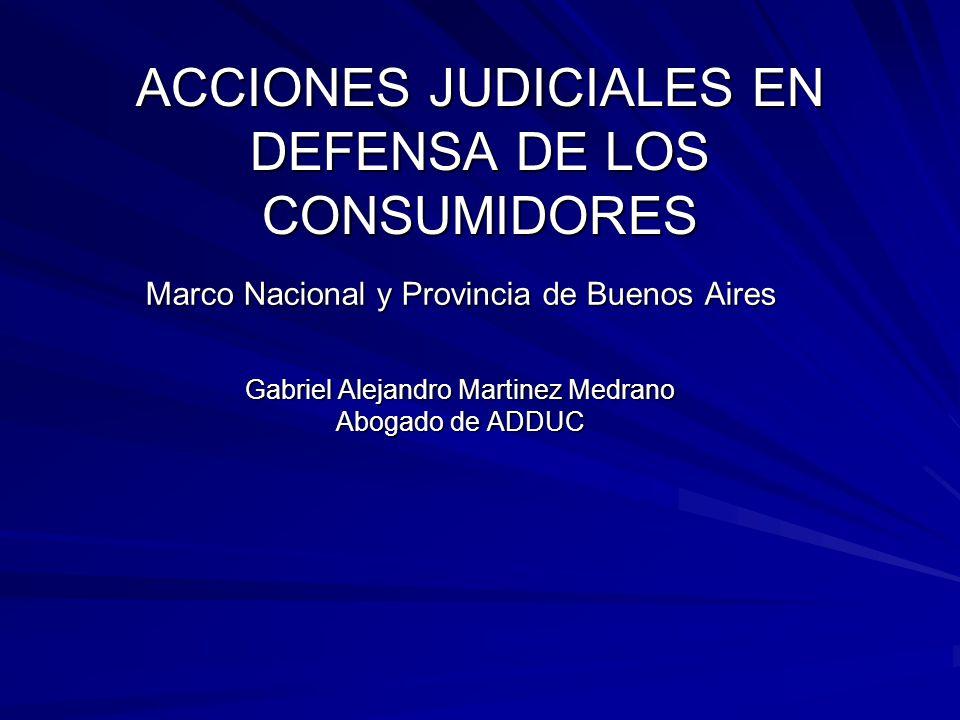 ACCIONES JUDICIALES EN DEFENSA DE LOS CONSUMIDORES Marco Nacional y Provincia de Buenos Aires Gabriel Alejandro Martinez Medrano Abogado de ADDUC