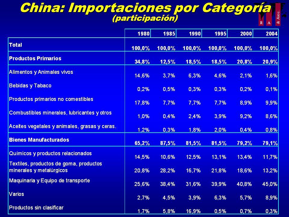 R A & Asoc. China: Importaciones por Categoría (participación)