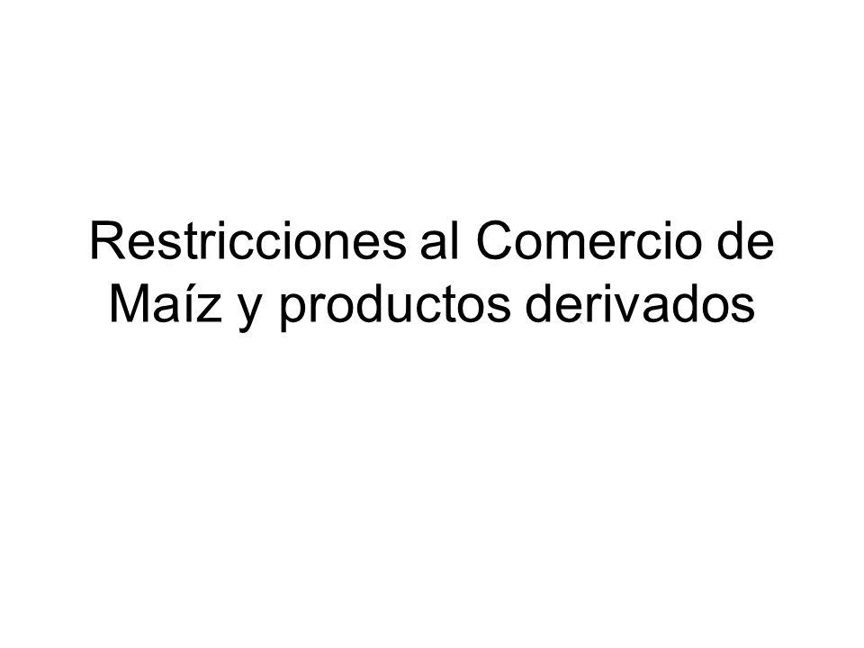 1)Actual situación de la producción de maíz en la Argentina y de las exportaciones mundiales.