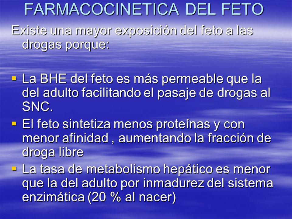 FARMACOCINETICA DEL FETO Existe una mayor exposición del feto a las drogas porque: La BHE del feto es más permeable que la del adulto facilitando el p